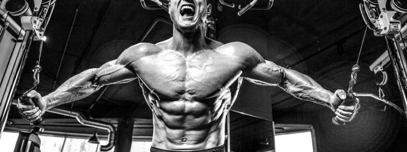 Muskeln trainieren, Flexibilität nicht vergessen